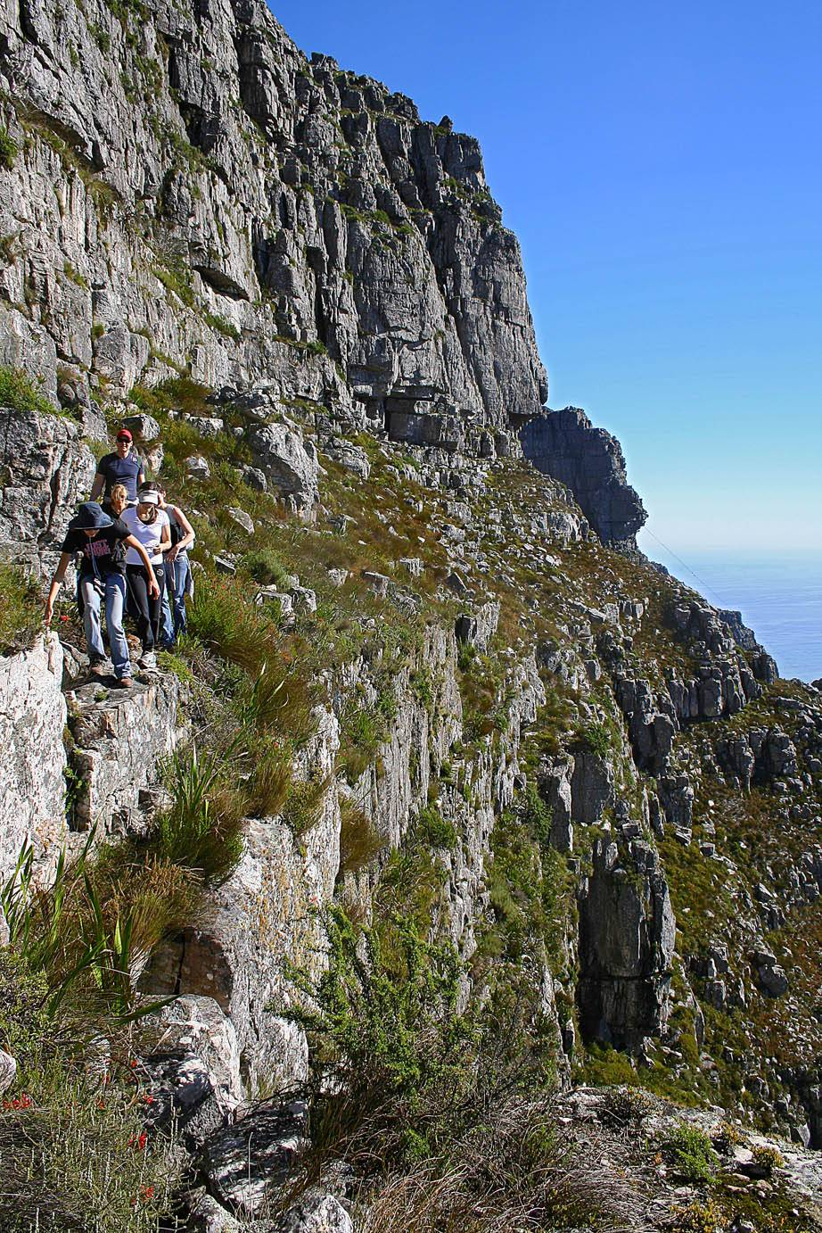 A group traversing on the Left Face trail on Table Mountain, with a mountain guide. Kapstadt, Tafelberg Führer - Left Face Route