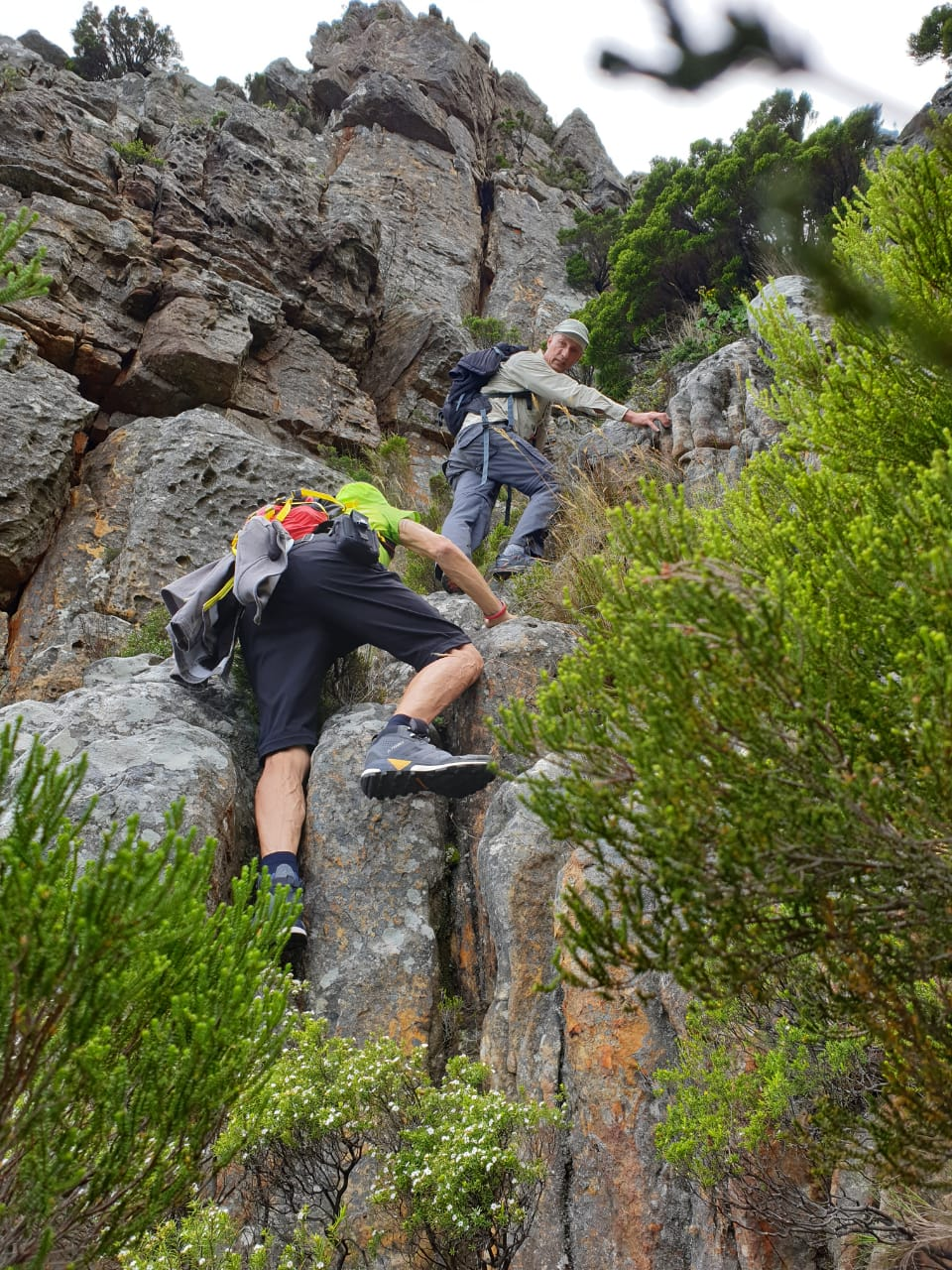 Wood Buttress Scramble - Table Mountain guided hikes