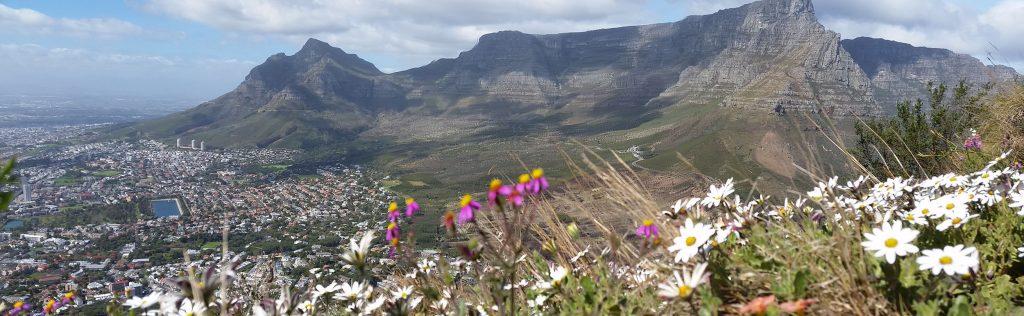 Table Mountain Hiking Tours