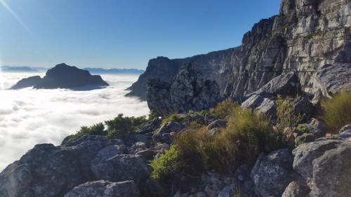 India Venster, Table Mountain,  in fog.